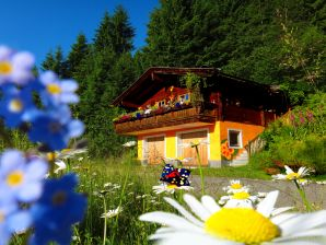 Chalet Zell am See