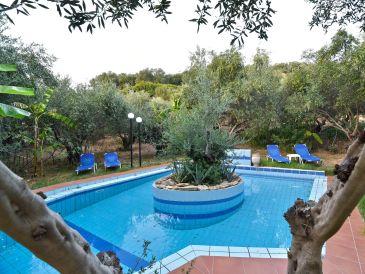 Luxury Villa with private pools. Olive Farm Villa