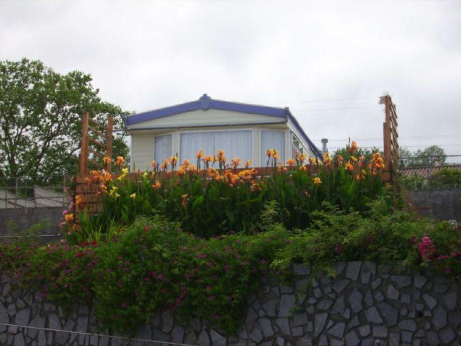 Ferienhaus Terrasse Blick zum Meer