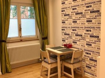 Schöne Einzimmer Ferienwohnung in zentraler Lage (2)
