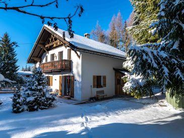 Ferienhaus Schneehaus Lodge