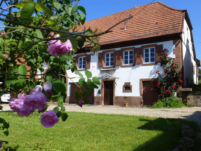Ferienhaus Domaine du Chasseur Wanzel