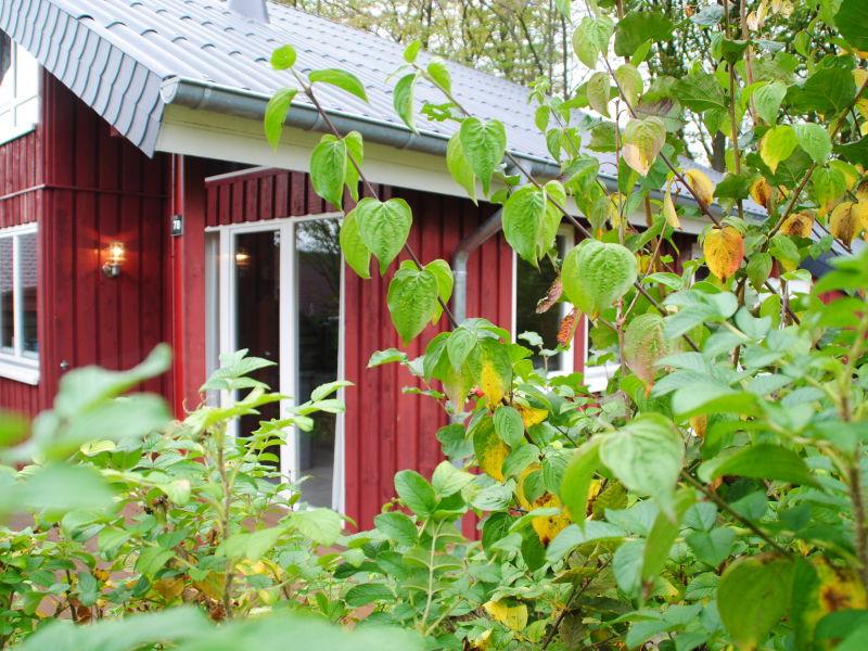 Ferienhaus IXI
