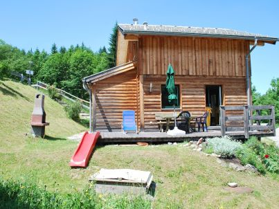 Cosy new log cabin dachstein west 15