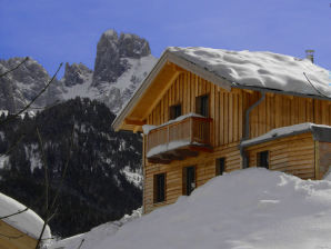 Holiday house Cosy new log cabin dachstein west 15