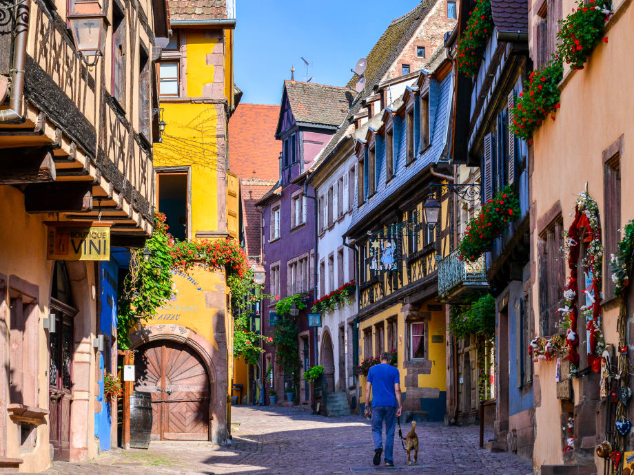 Holiday Apartment Quot The Sentinel Quot Riquewihr Bei Colmar