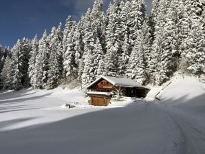 Berghütte Skihütte Mühlbergalm