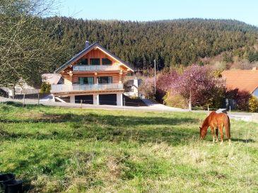 Ferienwohnung Steinbach See Lodges (Haus B)