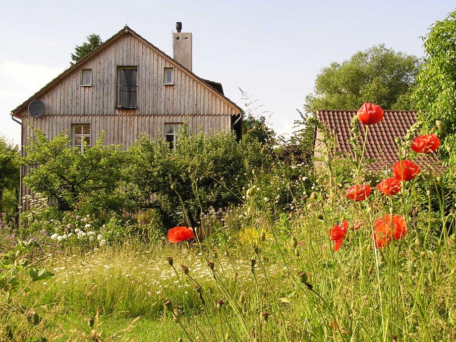 Gartenseite im Sommer