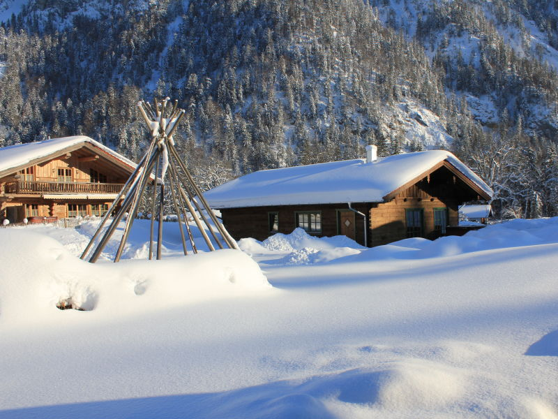 Chalet Farmholidays apartment Rauschberg