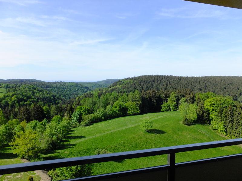 Ferienwohnung im Panoramic App.326 Hohegeiß
