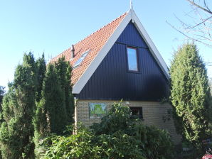 Ferienhaus In de Jeneverbes