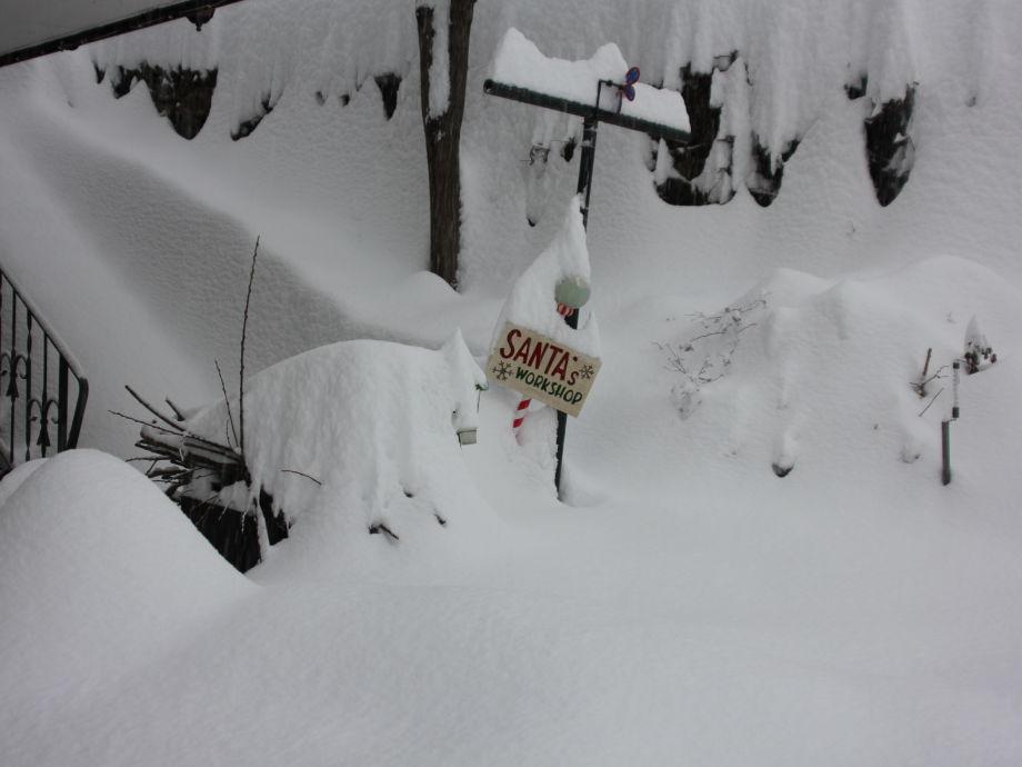 Garten in winter