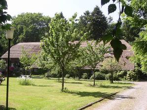 Ferienhaus Eekenhoff