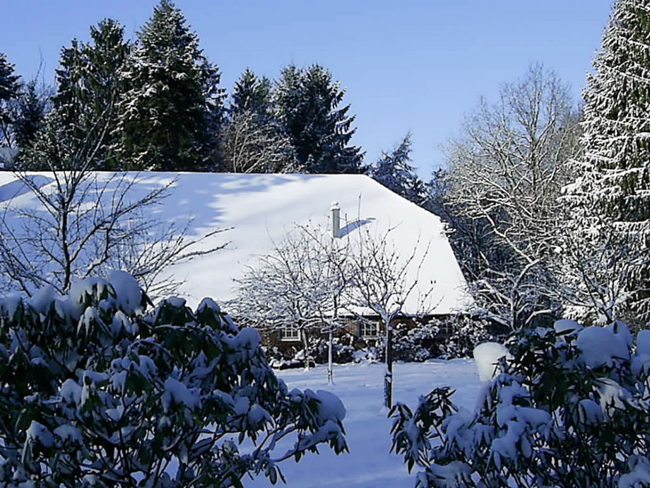 Ferienhaus Nolte
