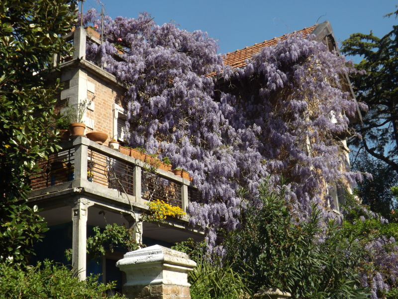 Holiday apartment Villa Bellodi