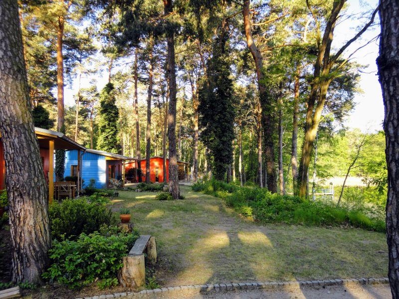 Ferienhaus Waldsee (4+2)