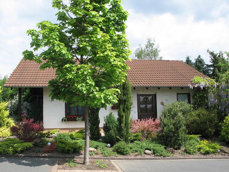 Oase (Nichtraucher-Ferienhaus)