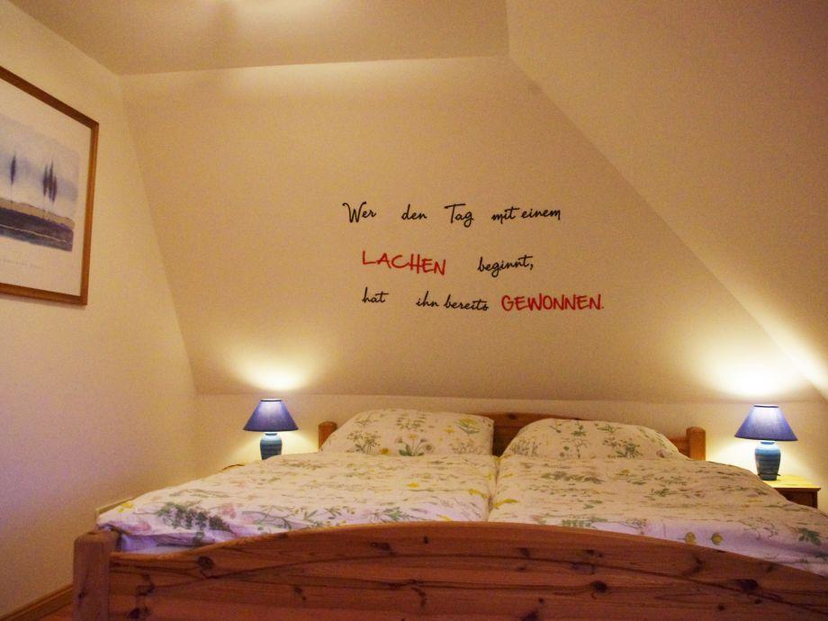 Meerschweinchen Im Schlafzimmer – capitalvia.co