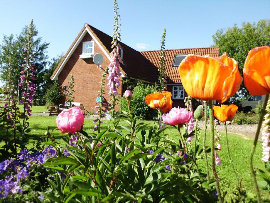 Idylle pur in Nordseenähe - Landhaus Nordseerose