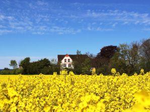 Ferienwohnung Rosengarten auf dem Hof Osterholz