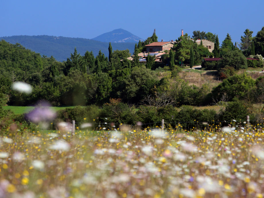 The country house Pomantello