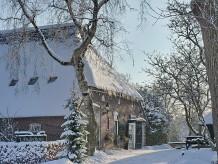 Ferienhaus 't Anderhoes