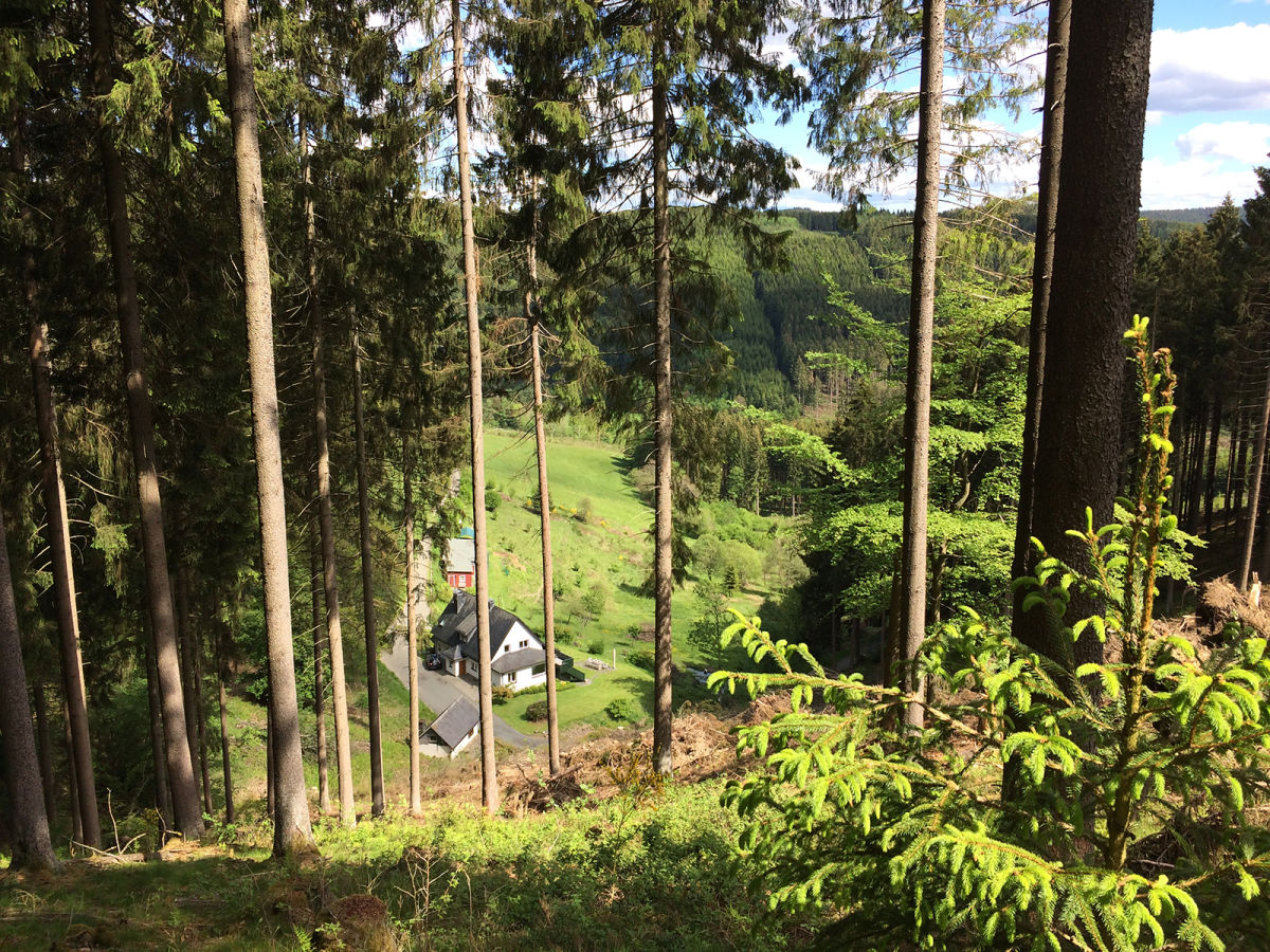 Geführte Wandertouren, Singlewanderungen und Marathontouren - RothaarTouren