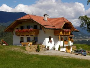 Holiday apartment 1 - Oberplunerhof