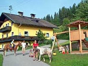 Bauernhof Ferienwohnung Hedegghof