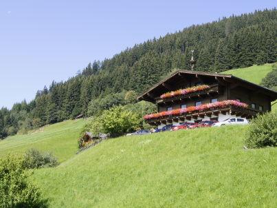 Brandnerhof 1