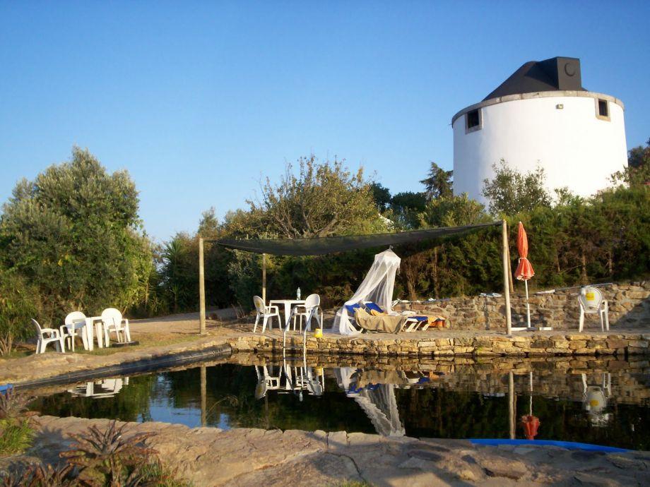 Badesee vor Windmühle