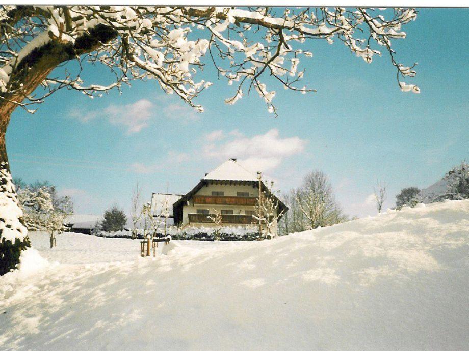 Winter auf dem Fischerhof