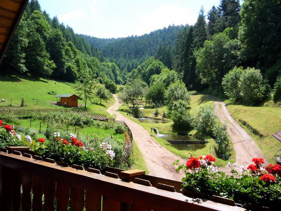 Umgebung Eulersbacher Hof