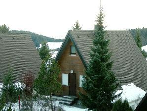 Ferienwohnung Schwarzwald Ferienhäuser Type B