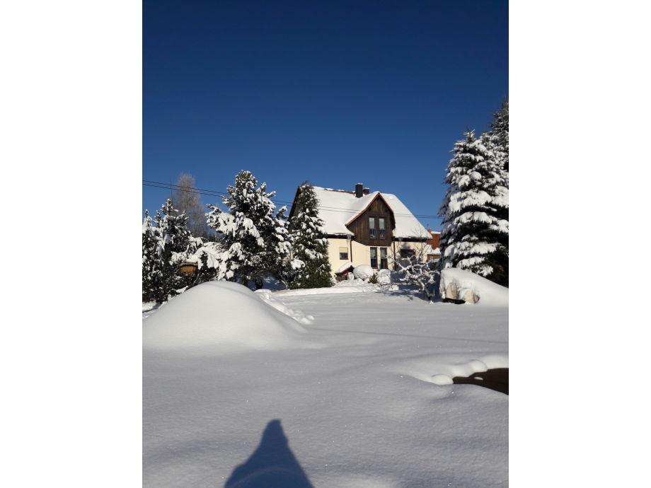 Winter in Hinterhermsdorf