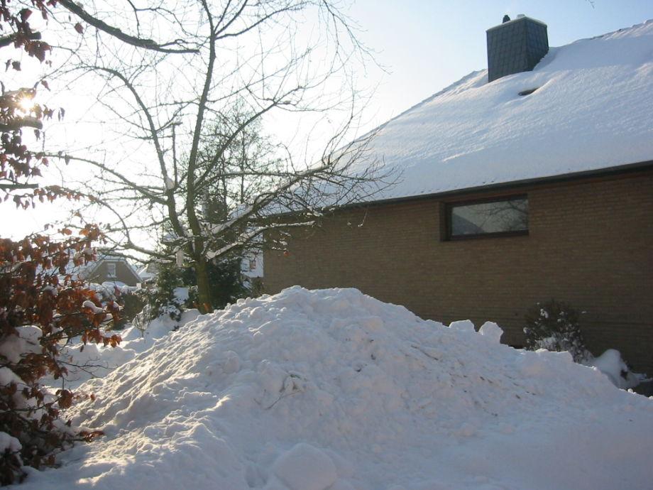 Schneeschippen müssen Sie auch im Winter nicht!