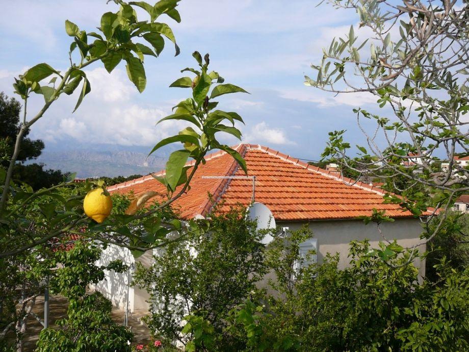Haus IVO in Splitska