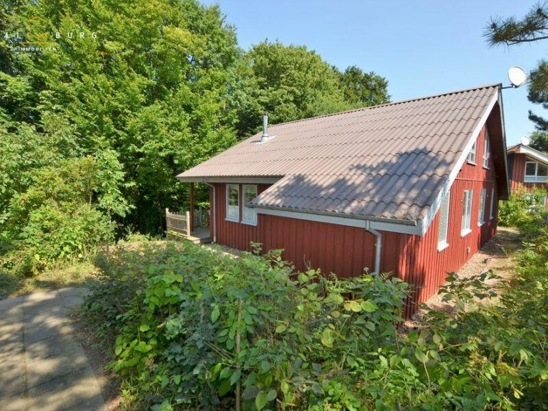 Ferienhaus Premium-Ferienhäuser Busch - Wald Natur