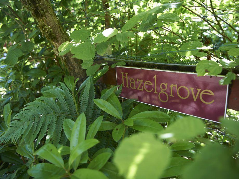 Außenaufnahme Hazelgrove Cottage