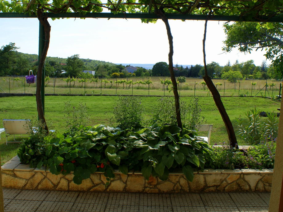 Blick aus dem fenster land  Ferienhaus Vezo, Labin - Mr. Vedran Frankovic