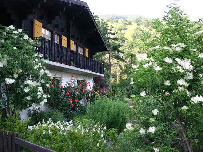mit wunderschönem Garten