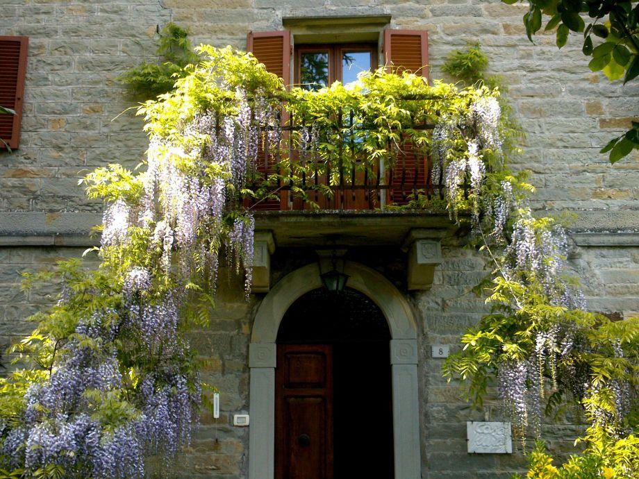 Casa Kuraj im Mai und Juni: Balkon mit Glyzinie