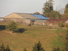 "Horse farm - horse-back riding and vacation park ""Tannenhof"""