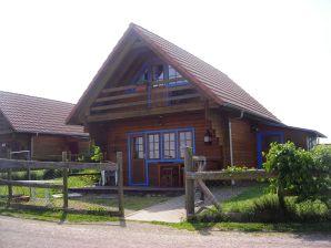 Ferienhaus auf der Reit- und Ferienanlage Pyrmonter Hof