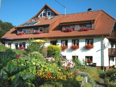 """Büchele """"Alpenblick in der Dachwohnung"""""""