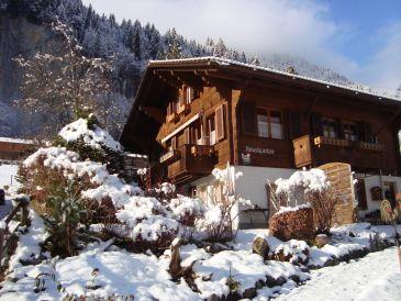 Ferienwohnung Nussbaumerhaus