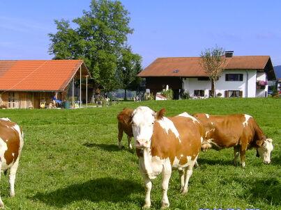 Bauernhof Familie Marianne Kühl u. Josef Böck