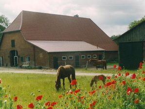 Bauernhof Welsh-Cob Gestüt