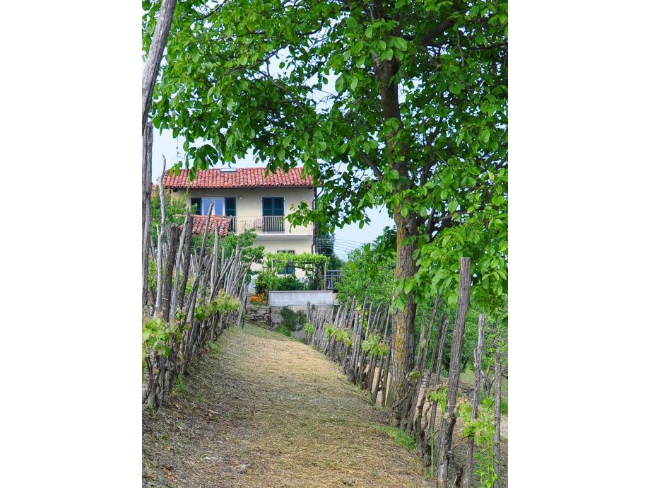 Landhaus Allegria Ciglie Piemont